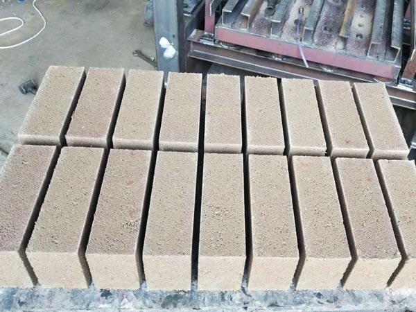 bricks produced by ABM-4SE semi automatic fly ash brick machine